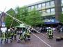 2010 - Maibaumsetzen